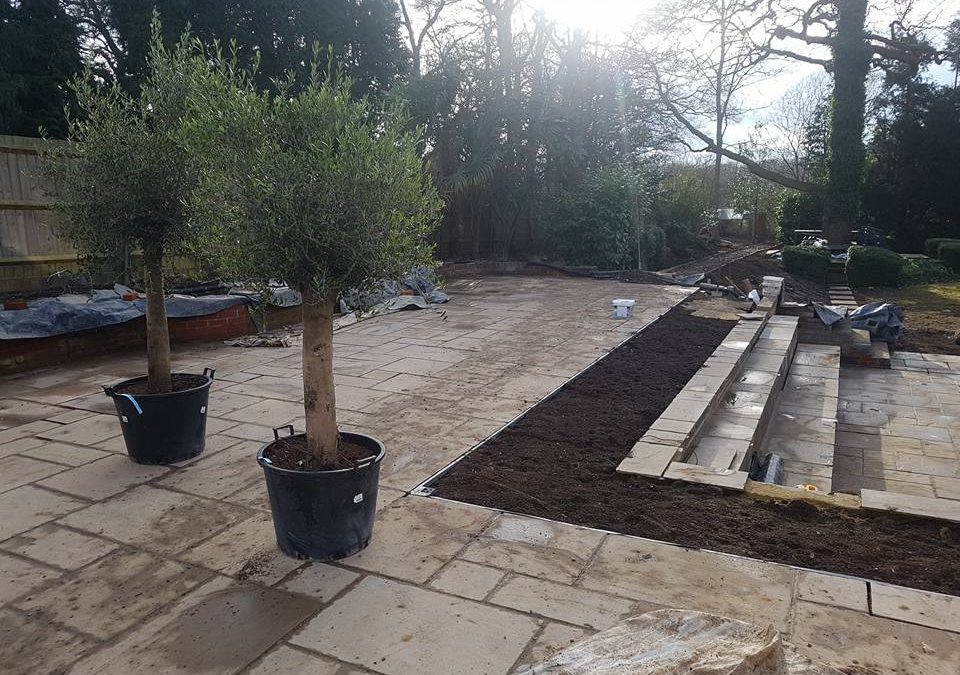 Common errors you should avoid when you are landscaping in cobham